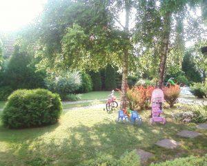 vrt-ivane-vorgic