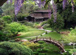 Japanski-vrt